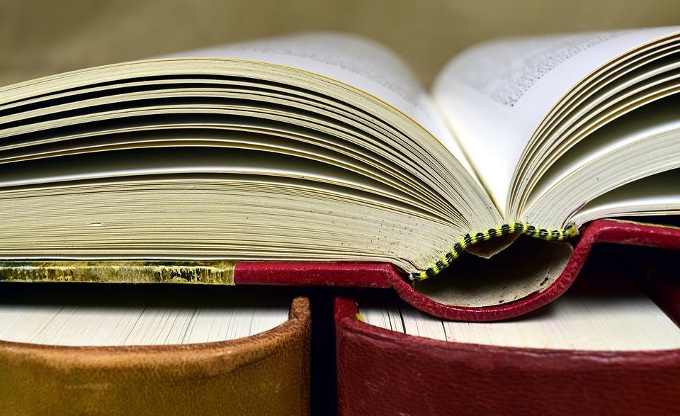 Polecamy cykl 'Sto książek na stulecie Polski' Małgorzaty Ślusarczyk [fot. https://pixabay.com/pl]