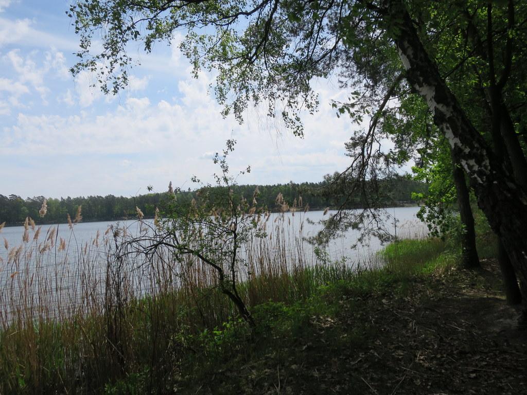 Jezioro w Osowwcu, archiwum [fot. Barbara Tyslik]