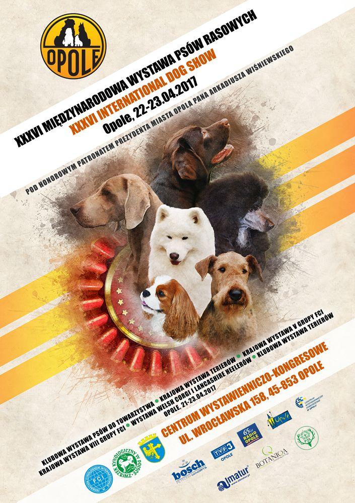 XXXVI Międzynarodowa Wystawa Psów Rasowych w Opolu