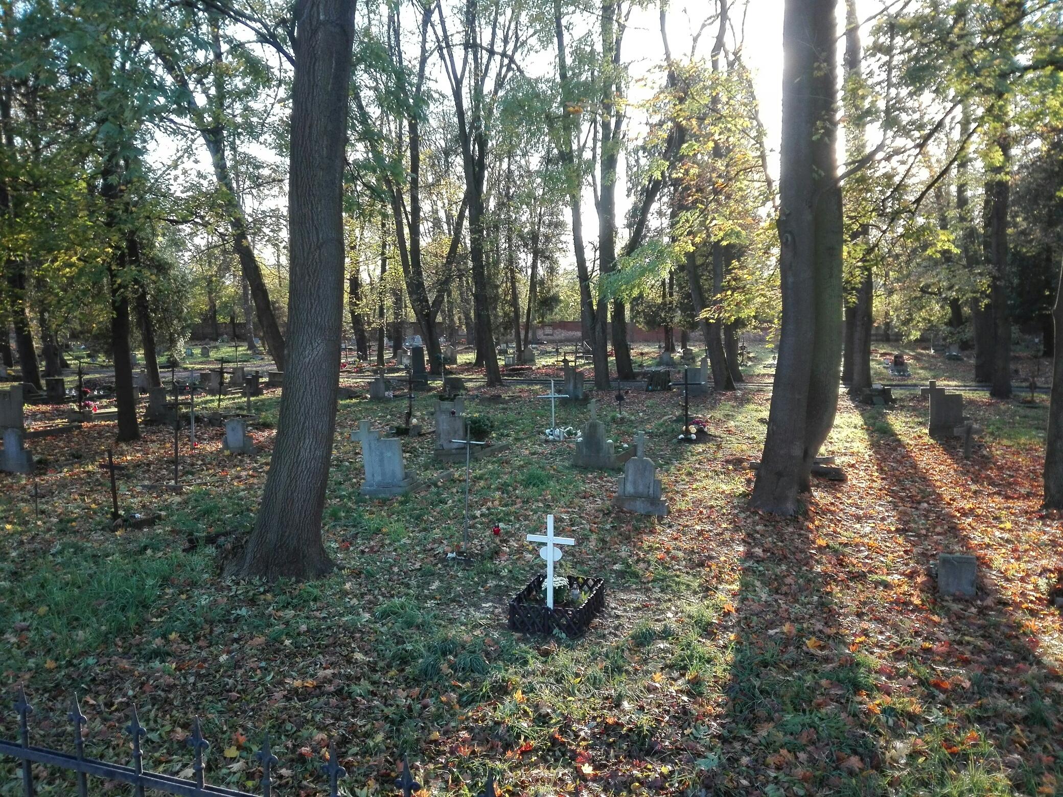 Cmentarz przy ul. Wrocławskiej w Opolu [fot. Sławomir Kieler]
