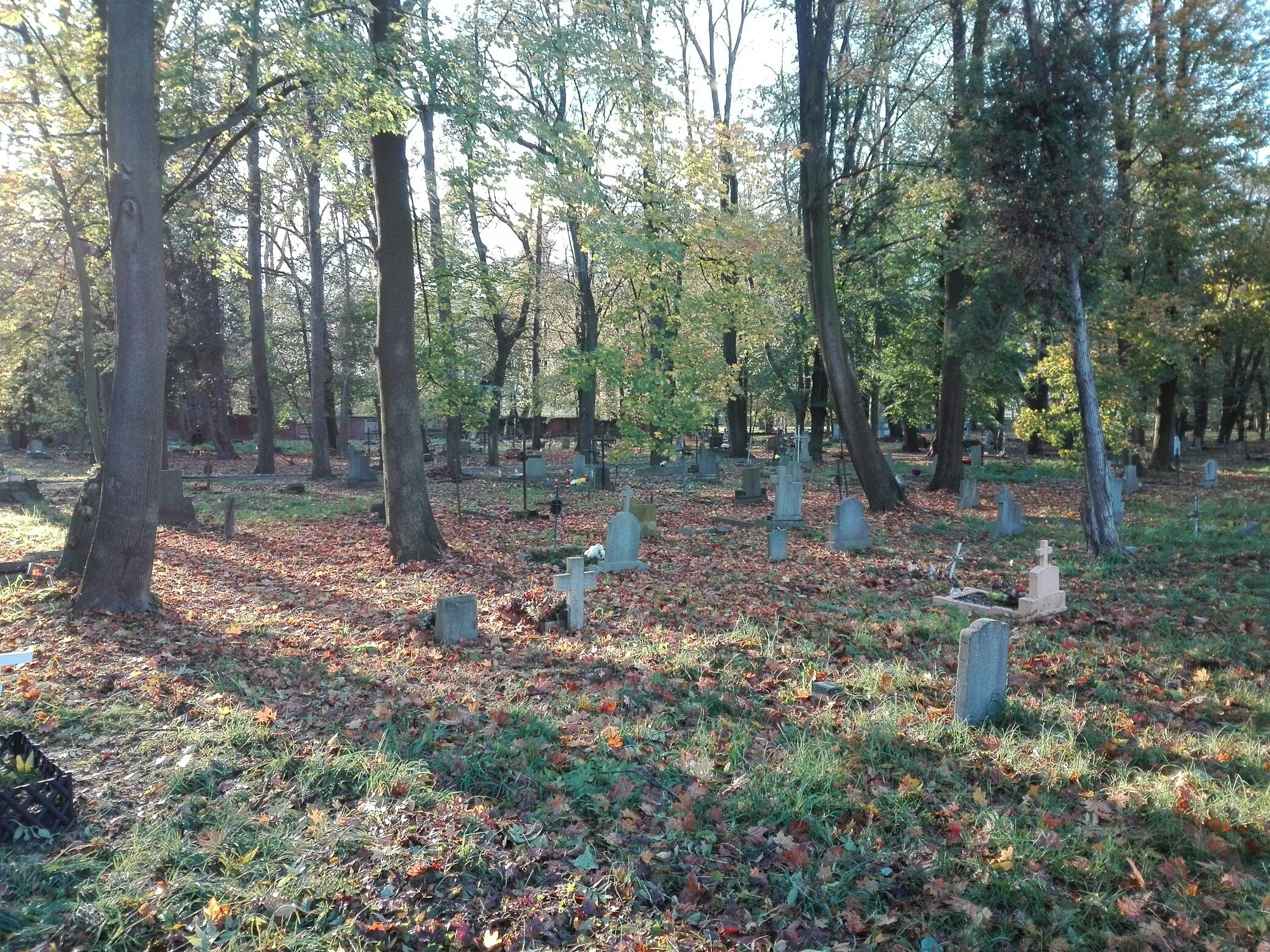 Opole: cmentarz przy Wrocławskiej wpisany do rejestru zabytków