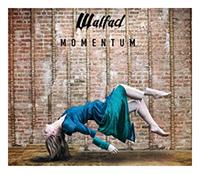 Okładka najnowszej płyty zespołu Waldad, wydanej w 2016 roku płyty 'Momentum' [fot. archiwum zespołu]