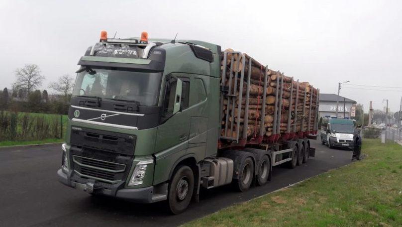 Kontrole przewoźników drewna [fot. WITD w Opolu]