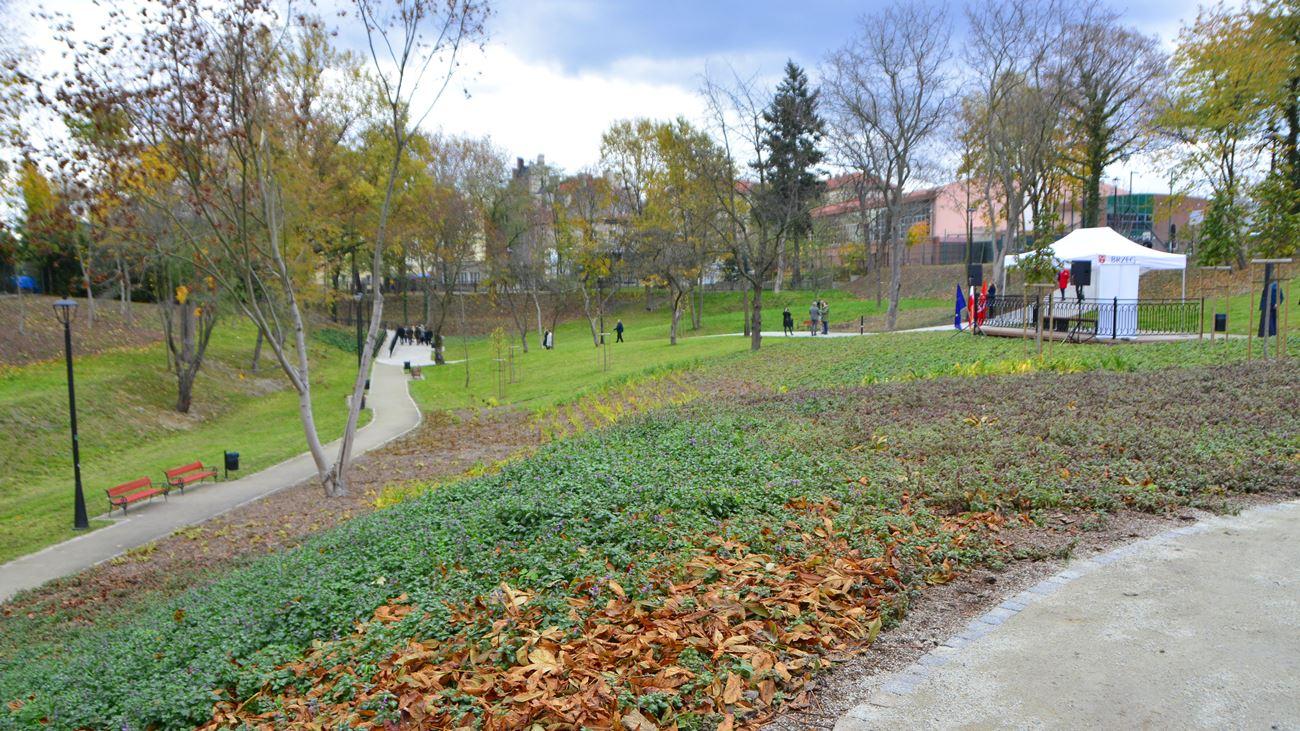 W czasie pandemii koronawirusa urządzili sobie grilla w parku. Czwórka młodych ludzi z Brzegu złamała zakaz gromadzenia się