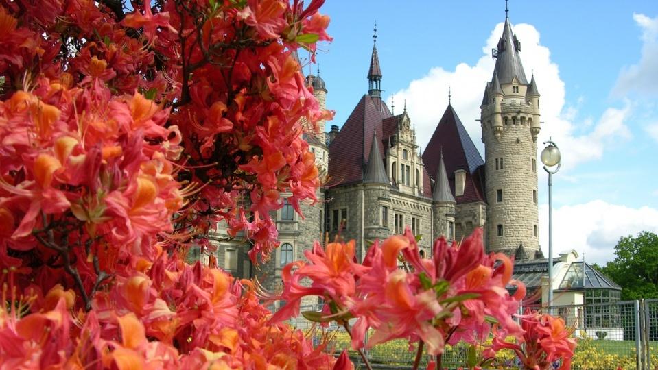 Zamek w Mosznej [fot. Teodor Wilk]