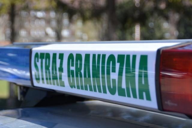 24 obywateli Ukrainy złapanych na nielegalnym przekroczeniu granicy. W akcji pomagali opolscy logistycy