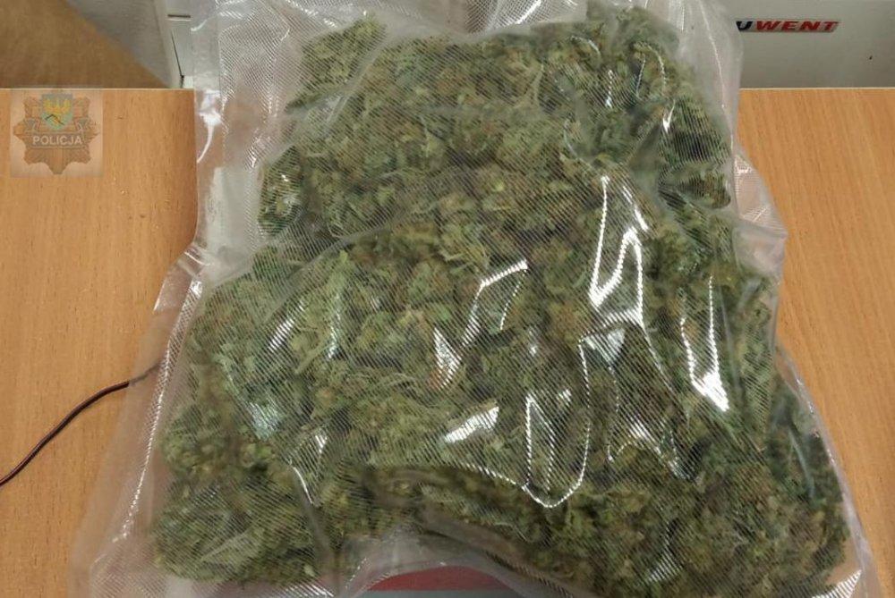 Miał 26 krzaków marihuany i ponad 250 gramów w mieszkaniu. Sąd wydał wyrok