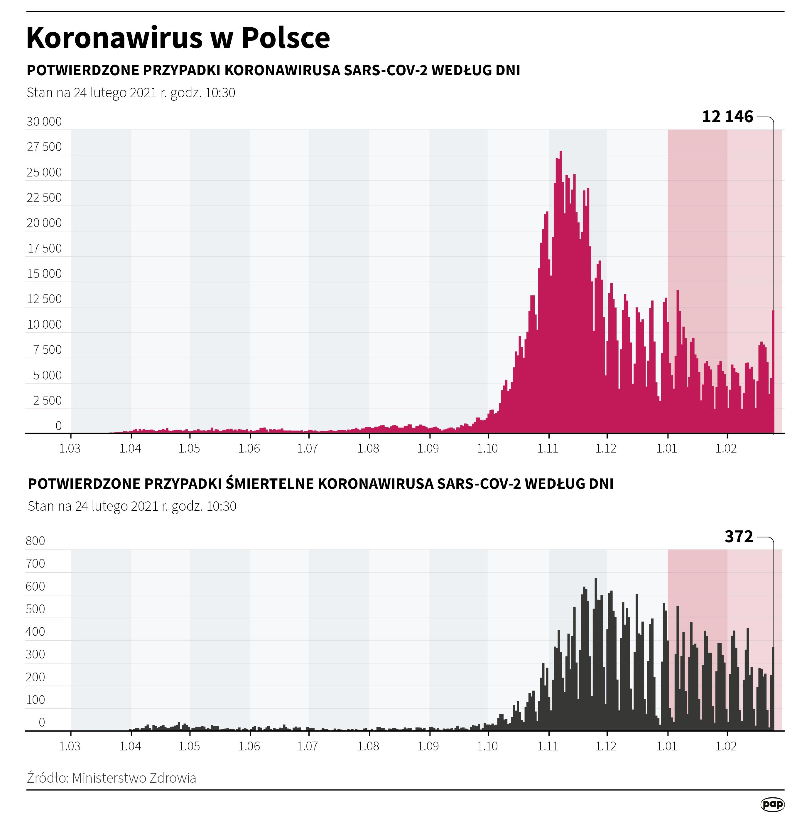 Infografika 'Koronawirus w Polsce - stan na 24 lutego' [autor: Maria Samczuk, źródło: PAP]