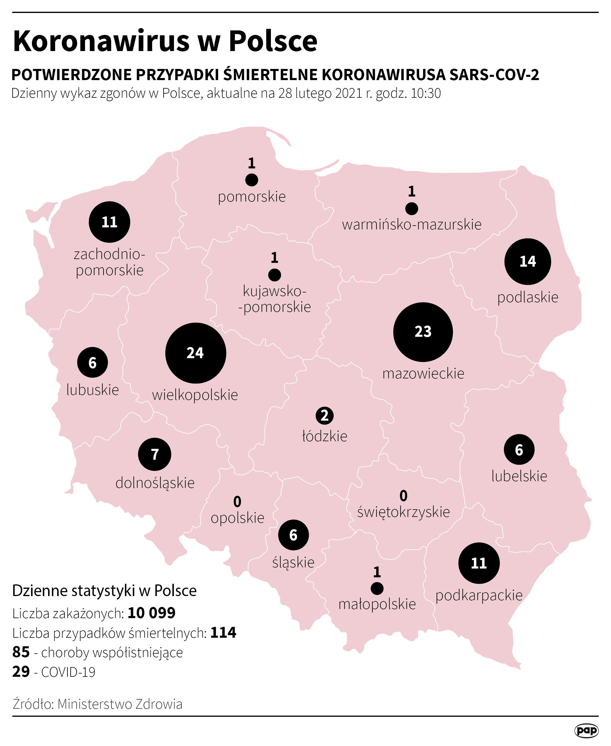 Koronawirus w Polsce stan na 28 lutego [autor: Maciej Zieliński, źródło: PAP]