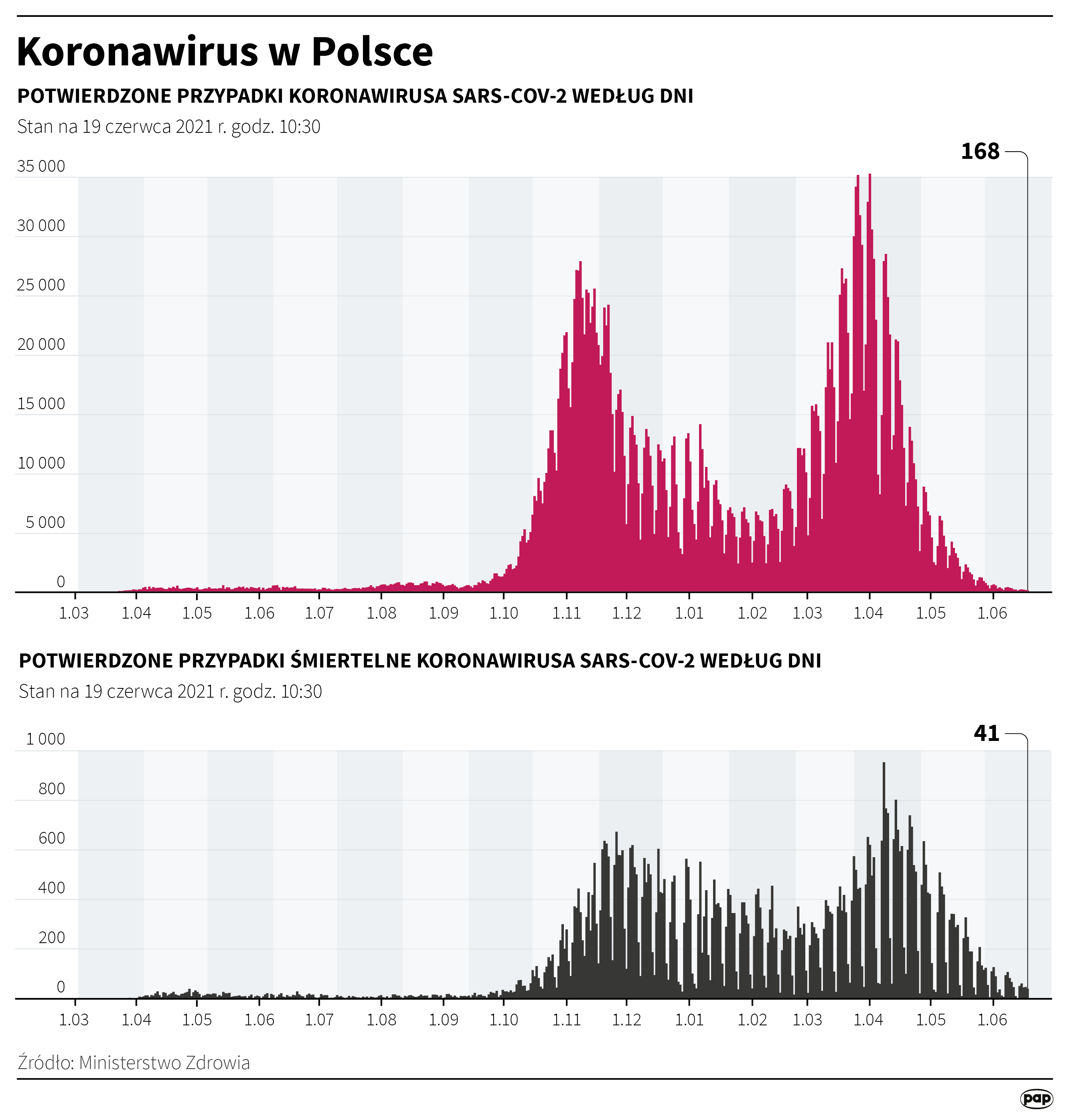 Koronawirus w Polsce - stan na 19 czerwca [rys. Adam Ziemienowicz / PAP]